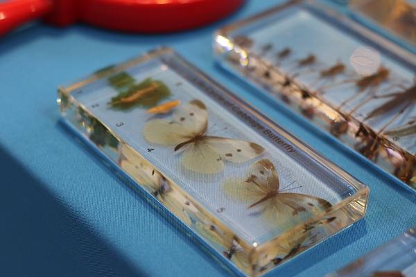 Научная выставка WorldDidac Russia 2017 Zoology